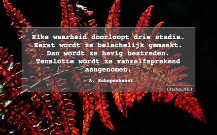 schopenhauer-elke-waarheid-doorloopt-drie-stadia-eerst-wordt.jpg