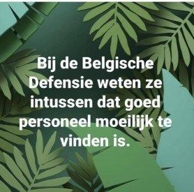 belgie.jpeg